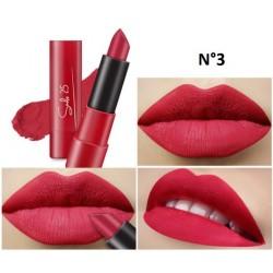 Lipstick Smile 25 1321