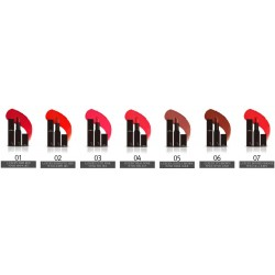 Lipstick TheSkinFace Bote 543