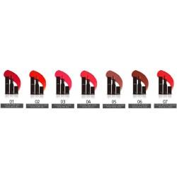 Rouge à lèvres TheSkinFace... 543